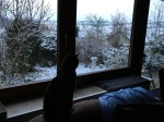 First snowfall...view from our home!